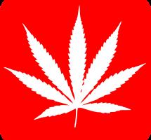 Apoyar la legalización y regulación del comercio de cannabis