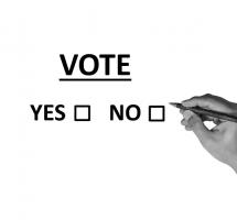 ¿Apoyar un cambio de la ley electoral para favorecer la participación ciudadana?
