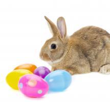Celebrar la Pascua