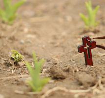 ¿Creer en la resurrección de los muertos?