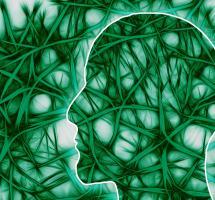 Creer que Dios es producto de la actividad cerebral