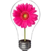 Bombilla con un flor dentro