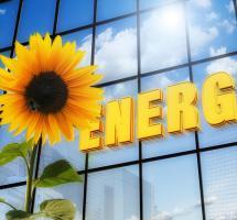 Apostar por las energías renovables