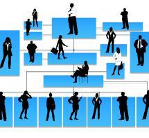 Formar estructuras de empresa basadas en la colaboración interna y externa