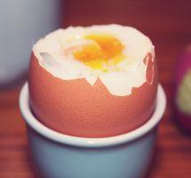¿Incluir en la alimentación proteínas de origen vegetal y no animal?