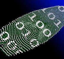 Mejorar la agilidad administrativa a través de la e-identidad