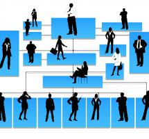 Pensar que la jerarquía es necesaria para la supervivencia de la empresa