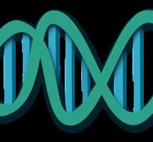 Permitir que cualquier persona tenga acceso a la información genética de otras personas