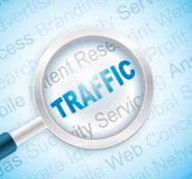 Lupa y trafico web
