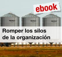 """¿Leer el ebook """"Romper los Silos de la organización"""" de Alberto Andreu?"""