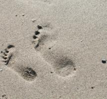 Huellas impresas en la arena de la playa
