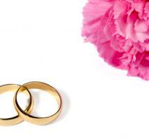Dos anillos de compromiso y una flor sobre fondo blanco