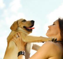 Mascotas, ¿tener una para evitar la soledad?
